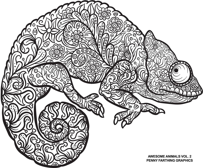Lizard From Awesome Animals Vol 2 Umrisszeichnungen Zentangle Zeichnungen