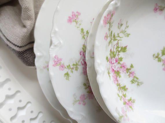 Set Haviland Limoges France Dinner Plates Climbing Rose Pink & Set Haviland Limoges France Dinner Plates Climbing Rose Pink ...