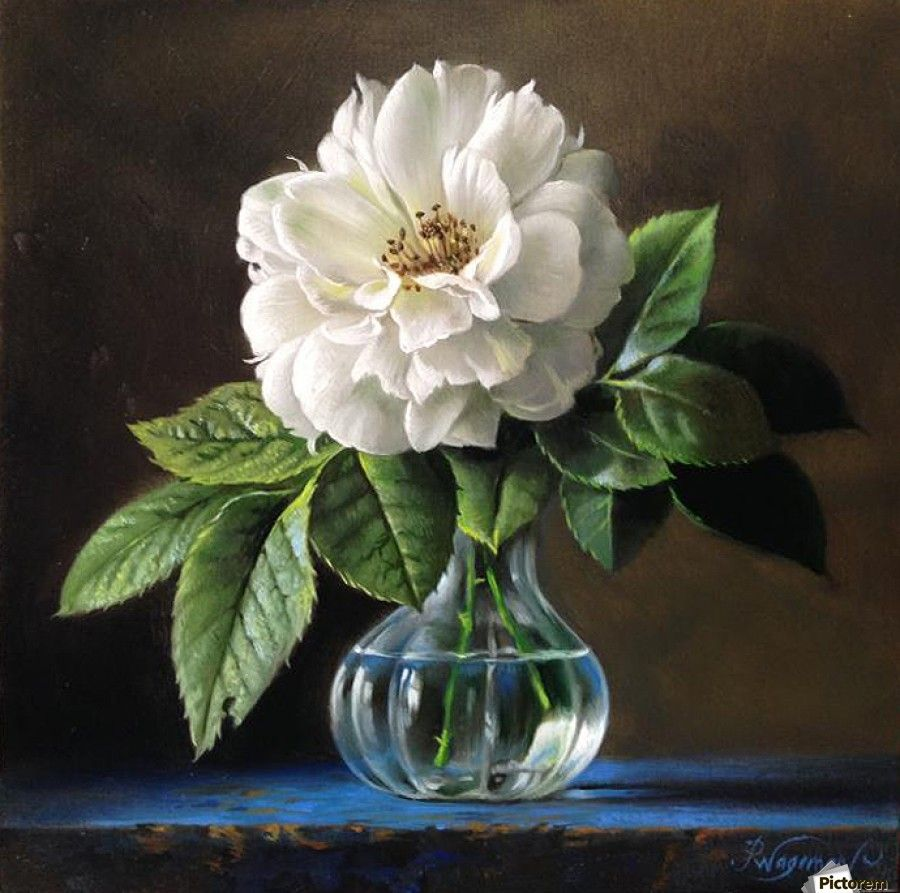 Garden Rose2 Pieter Wagemans Canvas Artwork In 2020