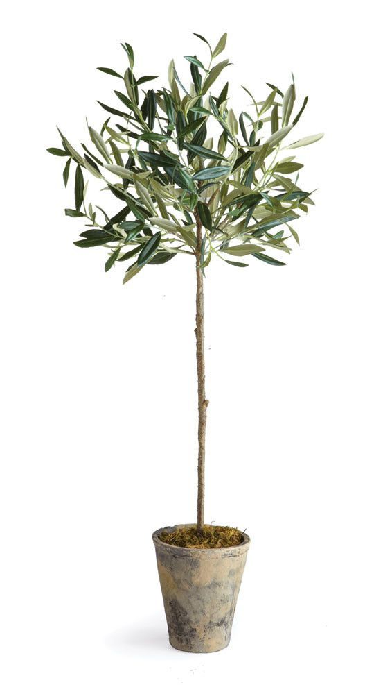 Olive Tree In Planter Potted Olive Tree Faux Olive Tree Potted