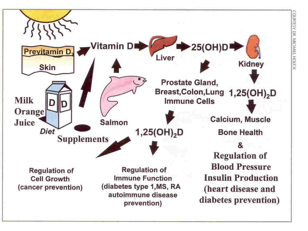 Effect of vitamin D supplementation on muscle strength, gait and ...