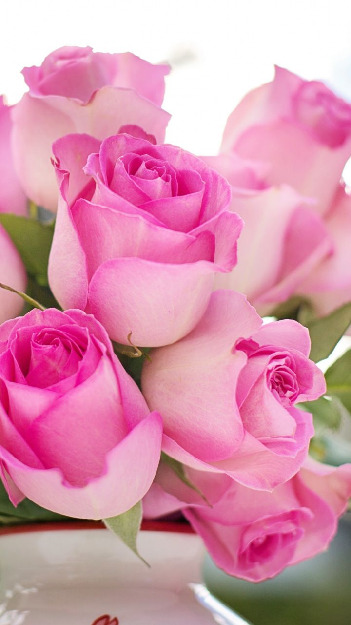 Flower Vase Pink Roses Fresh 720x1280 Wallpaper Most Beautiful Flowers Flowers Beautiful Flowers