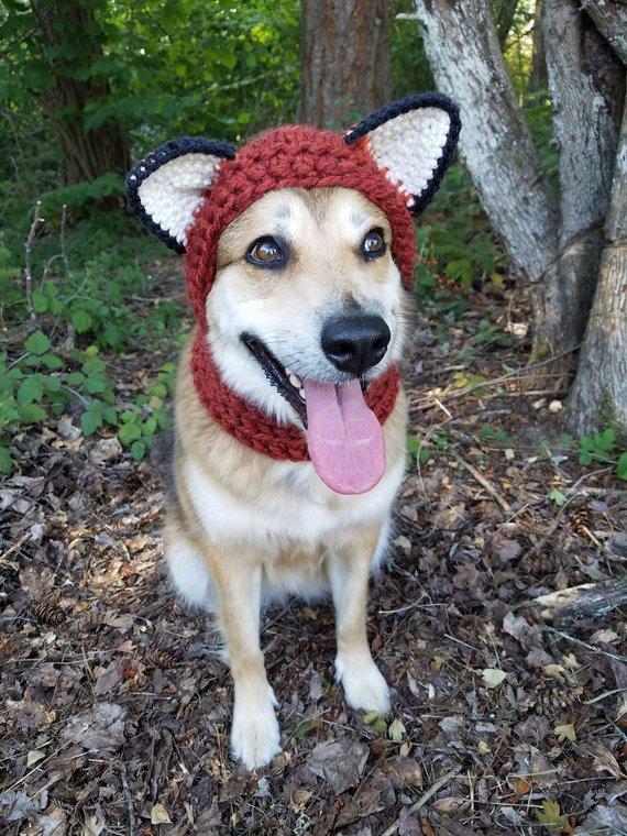 Crochet Pdf Pattern Make Your Own Dog Costume Fox Raccoon Bear
