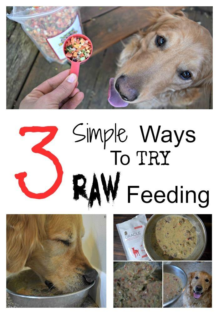Doc Knows Best Dr. Harvey's Dog Food Review Dog food