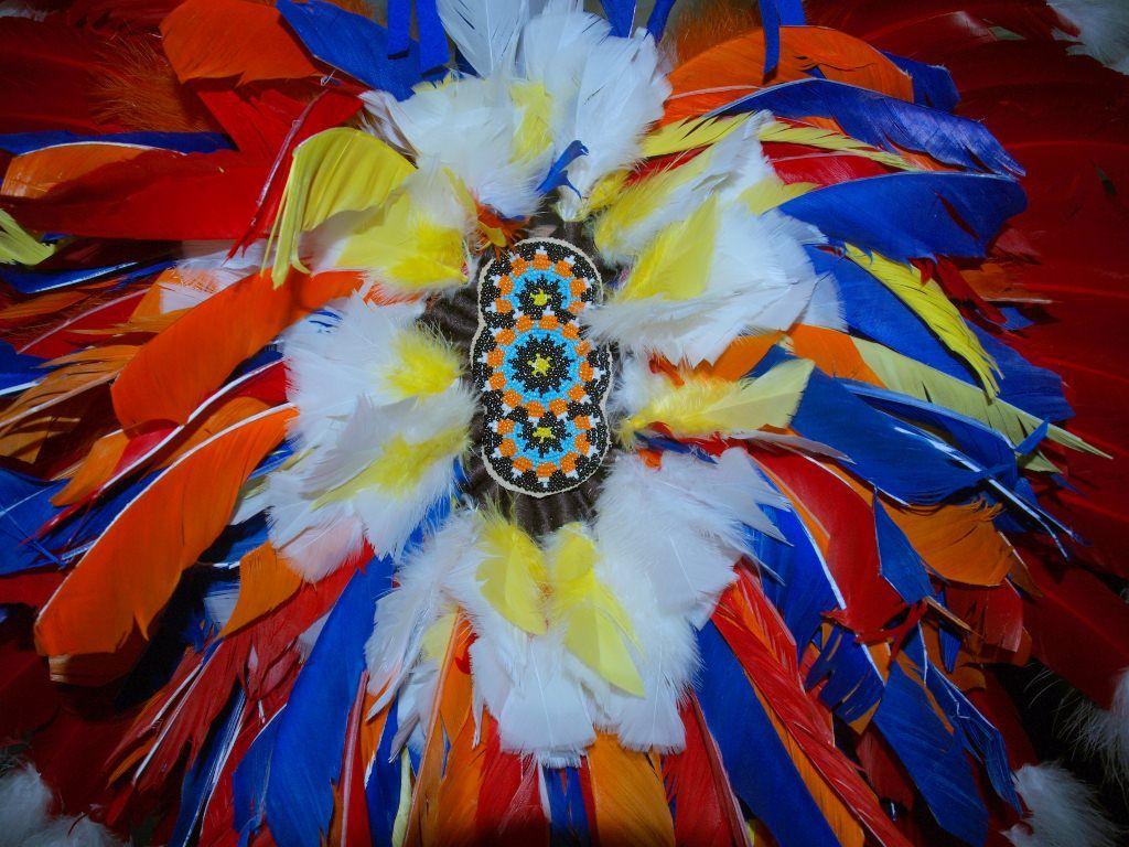 Powwow Dancy bustle- chicken style  -http://www.redstar-tradingpost.com/