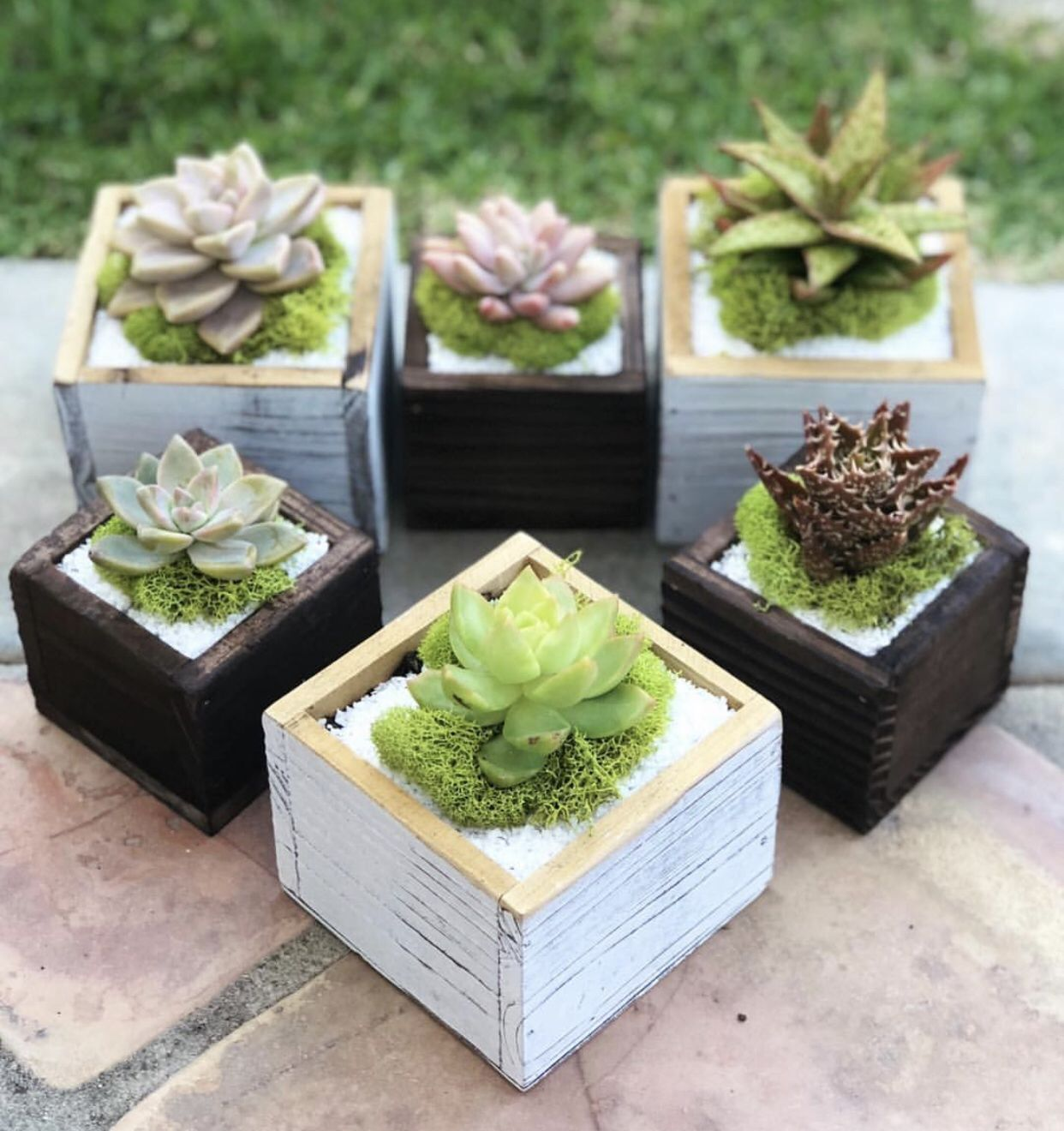 Rustic Wooden Box Planters Planter Boxes Succulent Planters Box Rustic Wooden Box