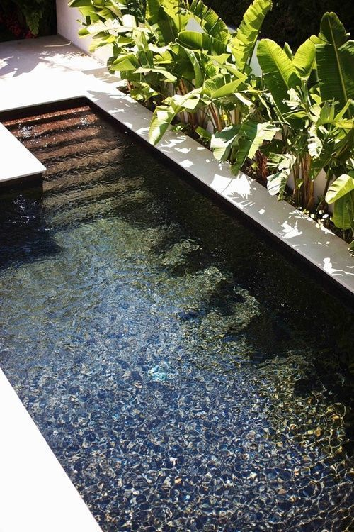 29 Small Plunge Pools To Suit Any Sized Backyard And Budget Small Backyard Pools Small Pool Design Natural Pool