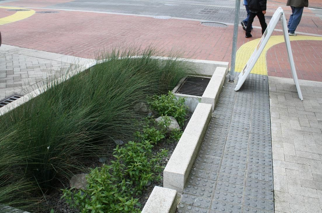 Planters for water overflow Google Search LEED Ideas