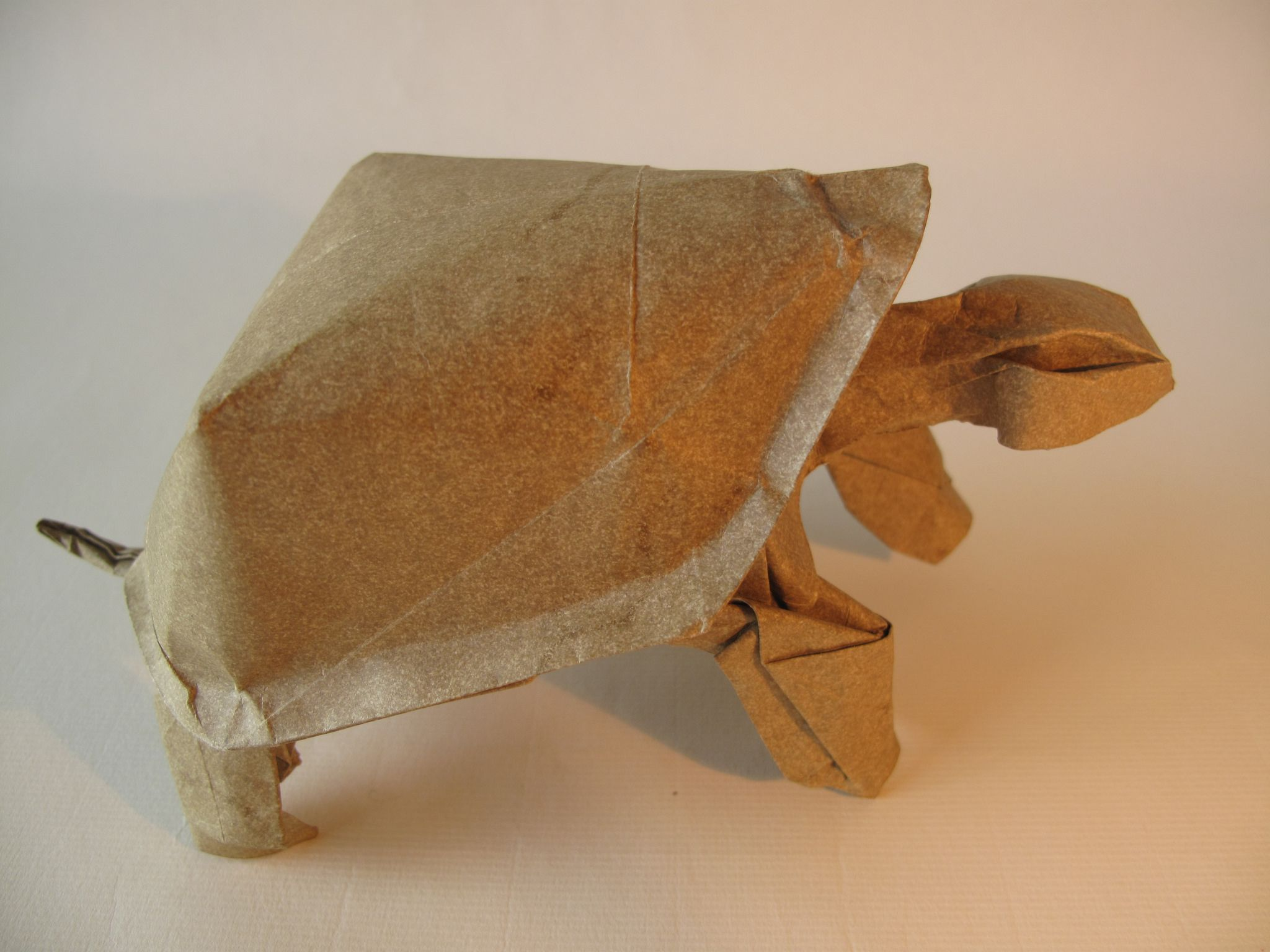 Tortoise nguyen hung cuong nguyen hung origami and tutorials httpsflicpkkkl8r tortoise nguyen hung jeuxipadfo Image collections