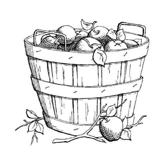 Sweet Apples In A Large Basket Coloring Page