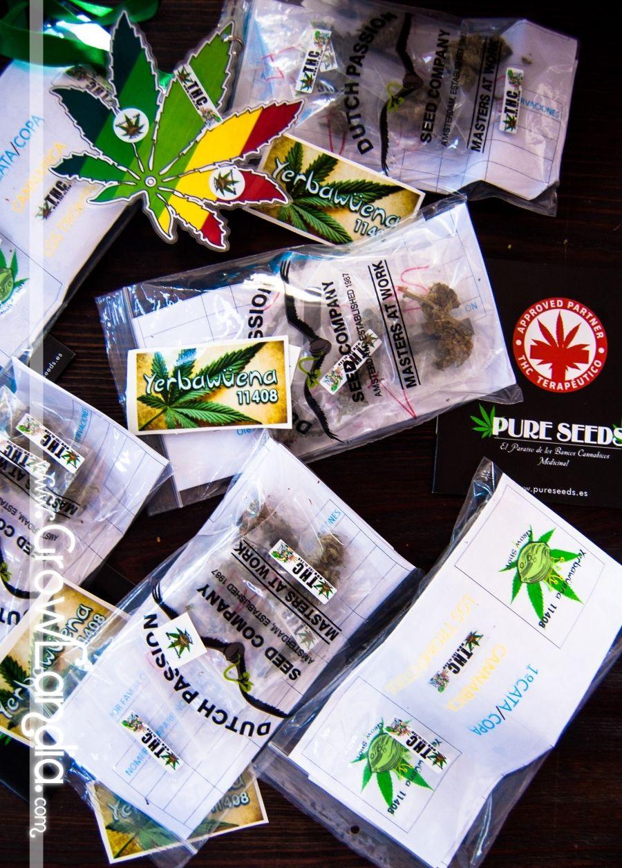 Yerbawüena 11408 celebró su 3er aniversario con todo esto (FOTOS) - http://growlandia.com/marihuana/yerbaguena-11408-celebro-su-3er-aniversario-con-todo-esto-fotos/