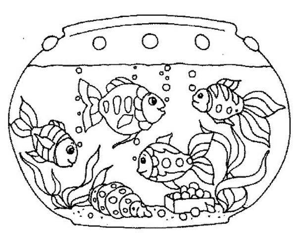 467623f4b6ac0f350f736da3888252a7 » Goldfish In Tank Coloring Pages