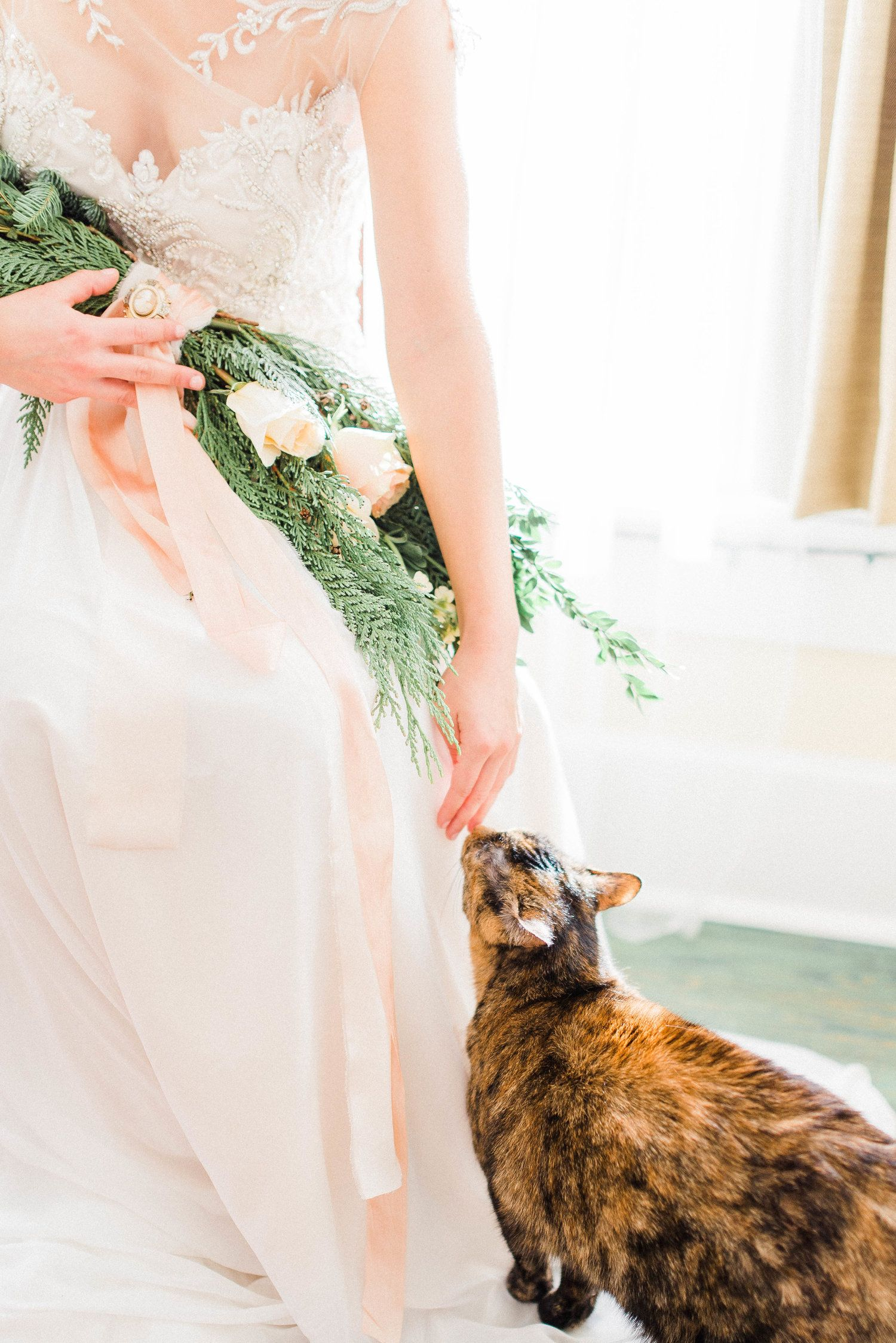 Cat in wedding dress  How sweet is this photo of a romantic bride in her wedding dress