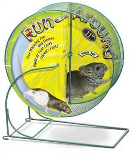 Kaytee Run Around Giant Exercise Wheel 11 Inch Colors V Small Pets Pets Cool Pets