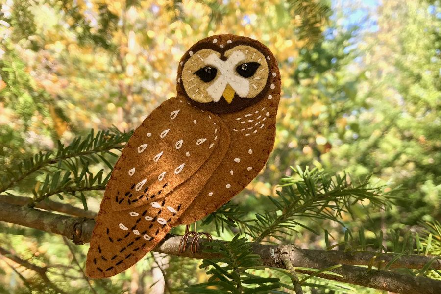 The Delightful Spotted Owl - Free Pattern | Felt owl ...