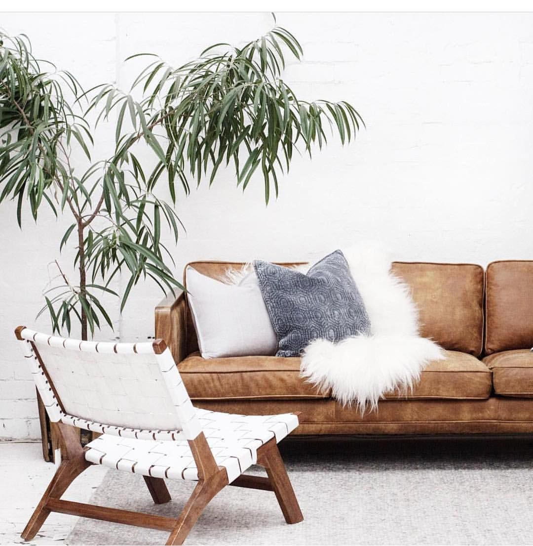 Rooms: Natural Tones Get Me Every Time 🌿 #regram