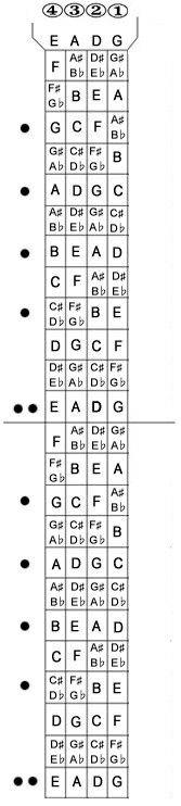 Bass Guitar Fretboard Chart : guitar, fretboard, chart