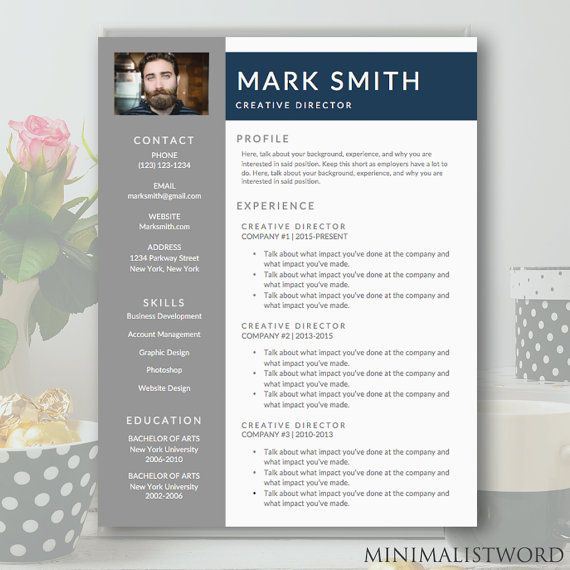 Professional Resume Template  Cv Template For Word  Diy