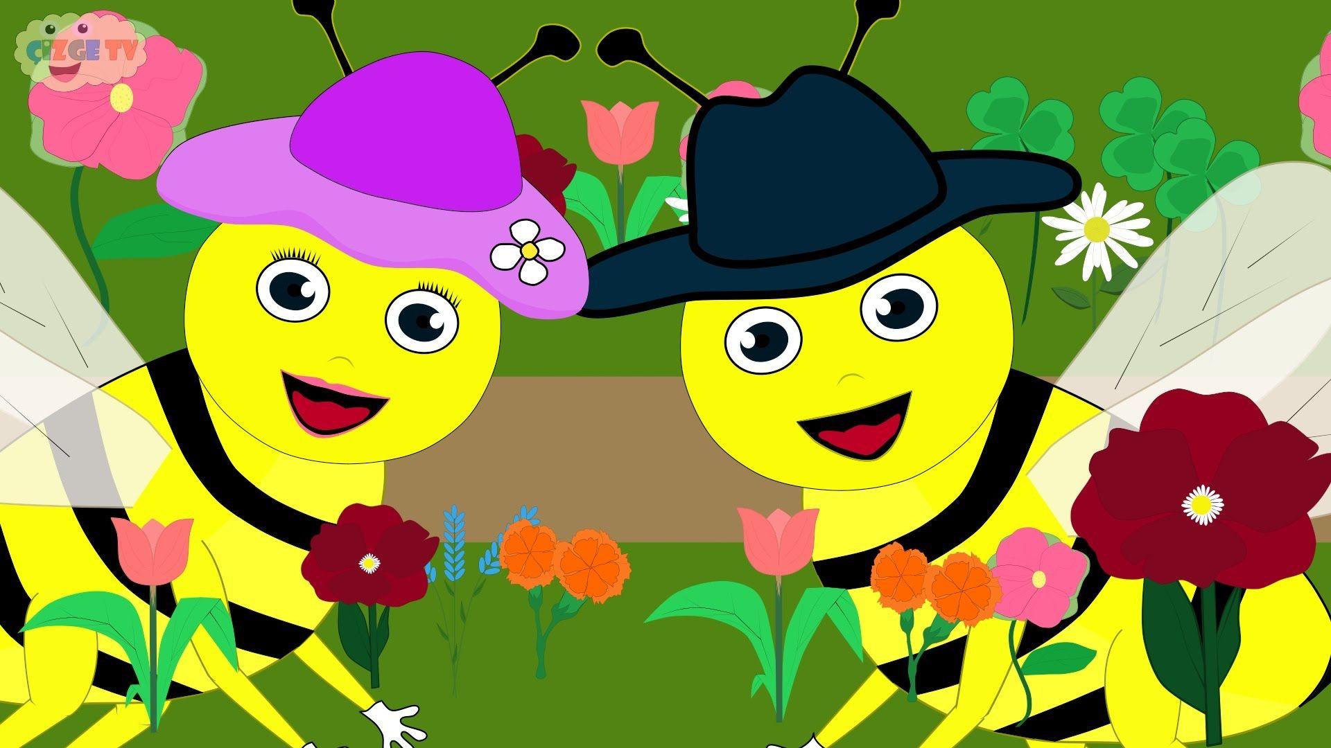 ÇOCUK ŞARKILARI - Çiçekler Rondu