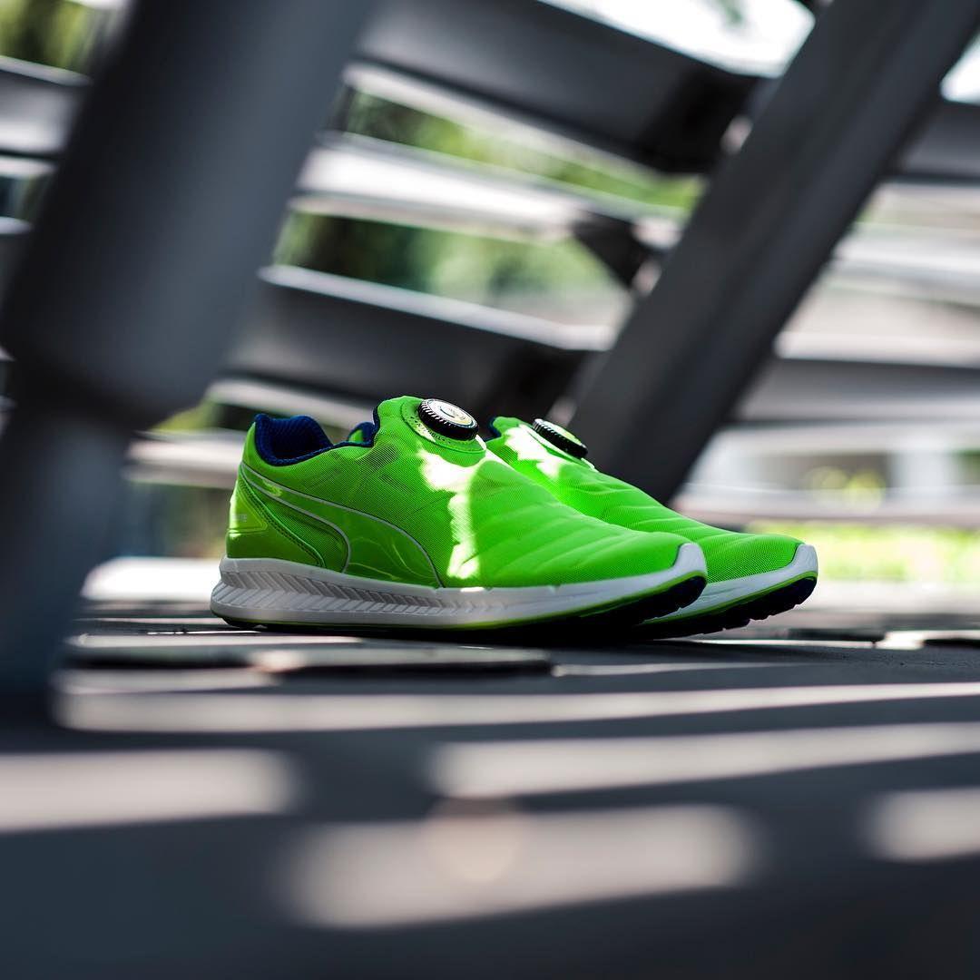 Puma Ignite Disc: Gecko Green | Sneakers, Shoes, Green