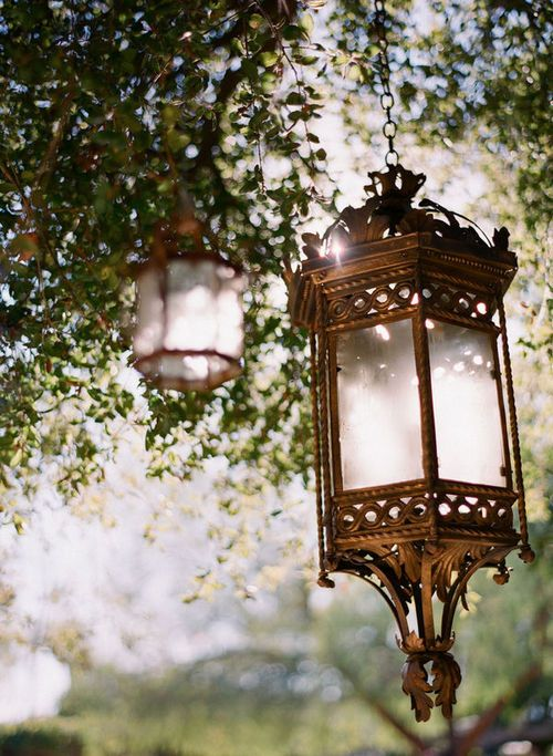 Lanterns In Trees These Are Even Pretty In Daylight Source Creativity Is Bliss Tumblr Tree Lanterns Lanterns Lantern Lights