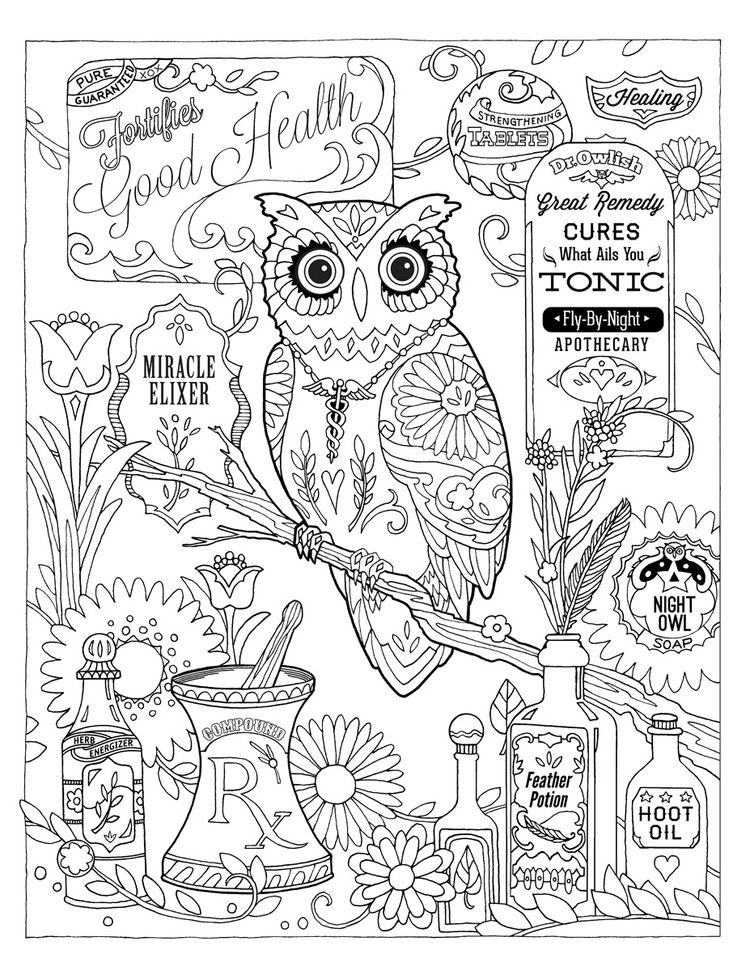Creative Haven Owls Coloring Book By Marjorie Sarnat Pharmacy