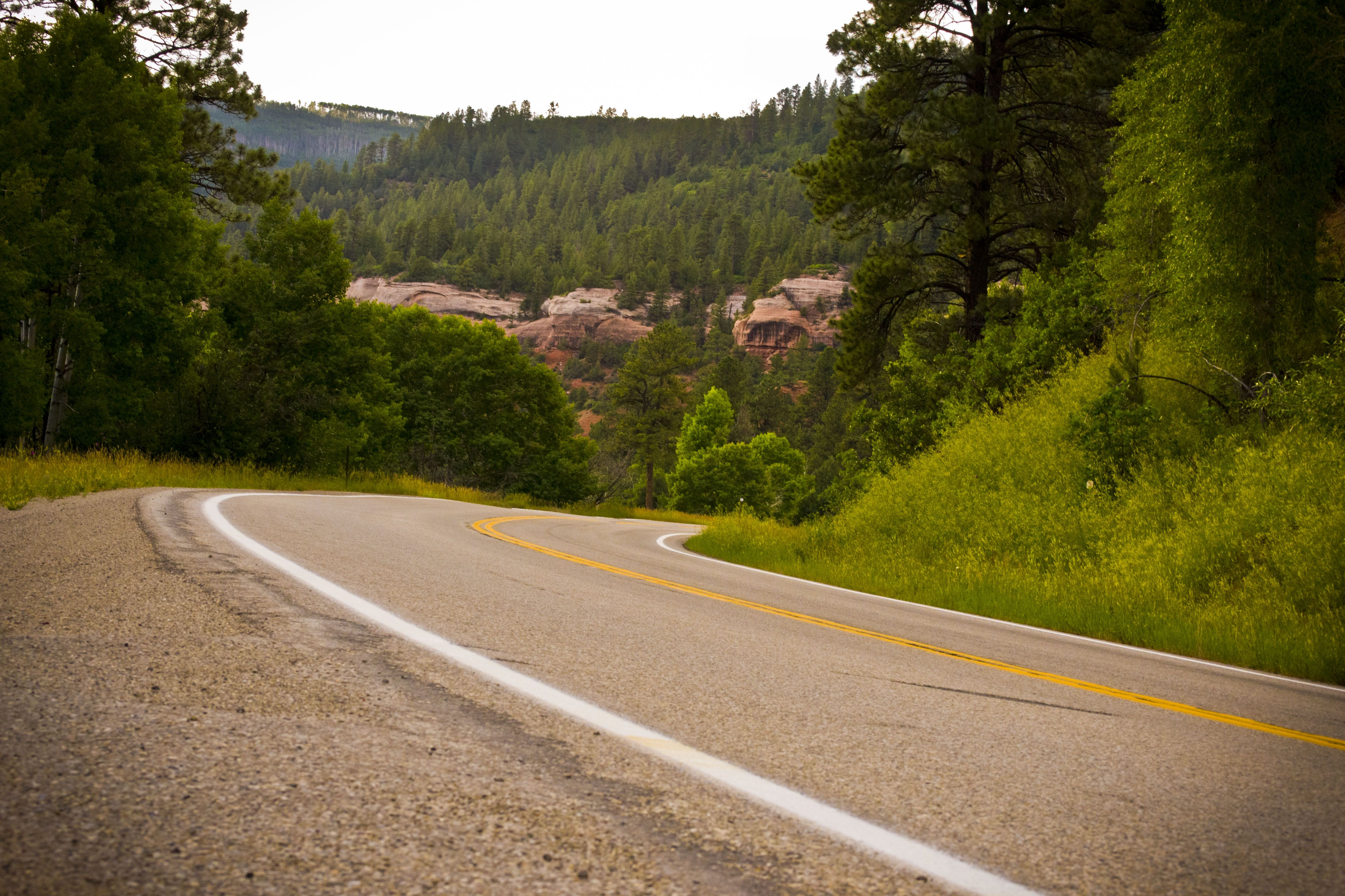 A nice curvy road we took up in Colorado.