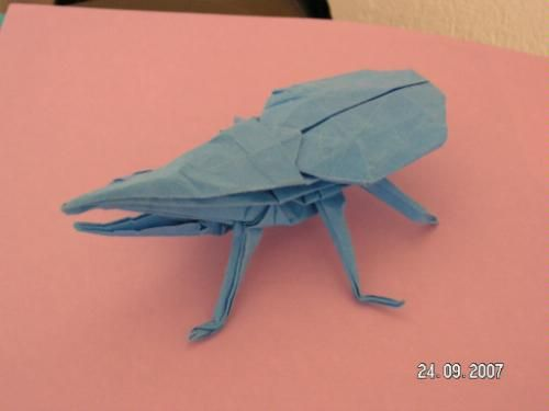 From Our Book Origami Insects Origami Origami Pinterest