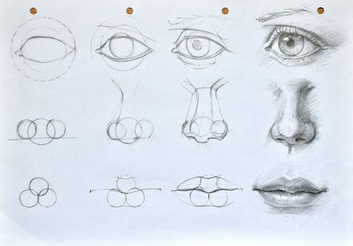 Facial Features Constructioncyclops Tutorial D By Anotherwanderer