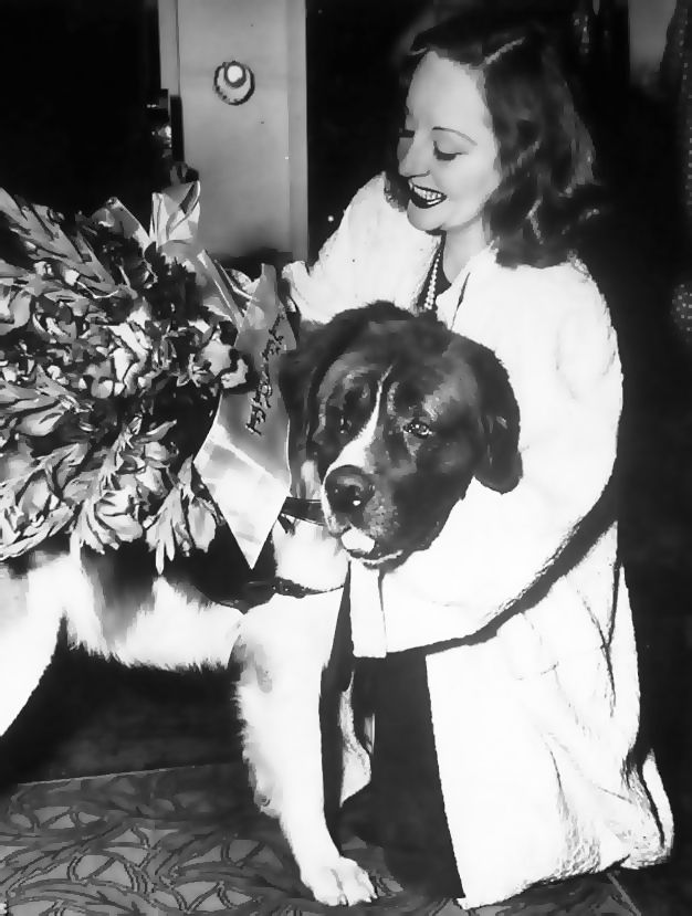 Some Classic Hollywood Actors and Their Pets Famous dogs