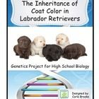 The Inheritance of Coat Color in Labrador Retrievers has been the all time favorite project of my Biology students for over 10 years and I'm sure your students will love it, too! It's a real-world scenario about inheritance patterns in one of America's favorite dog breeds.
