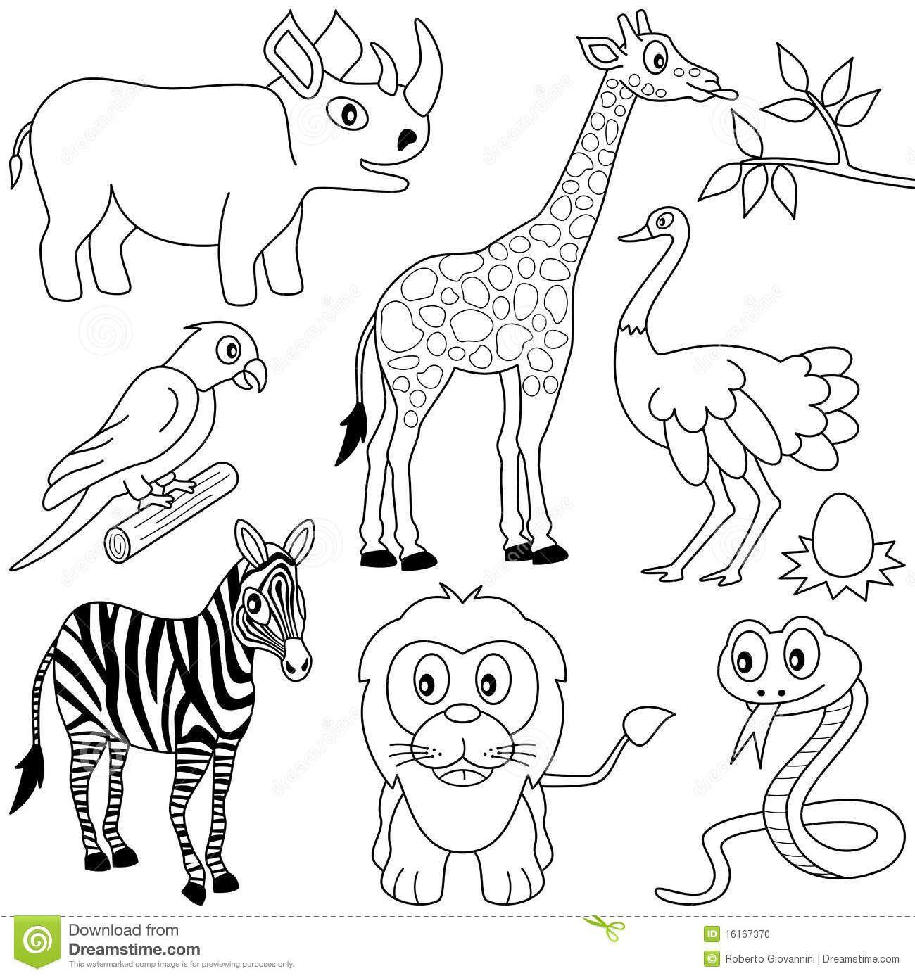 pigeon kresba - - Yahoo Image Search Results | Kresba-animals ...