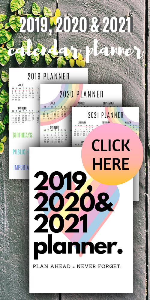 2019 2020 And 2021 Calendar Planner Yearly Agenda Journal 2021 Calendar Calendar Calendar Pages