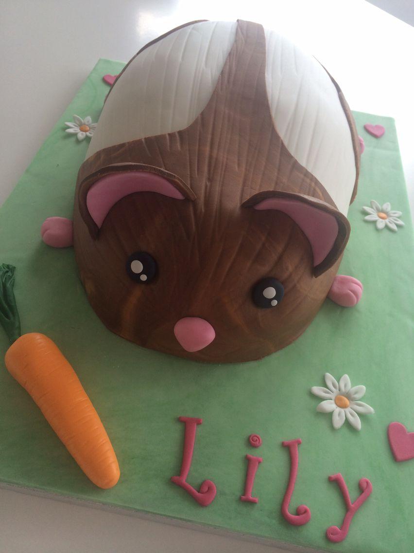 Hamster Birthday Cake Cakes Pinterest Birthday Cakes Cake And
