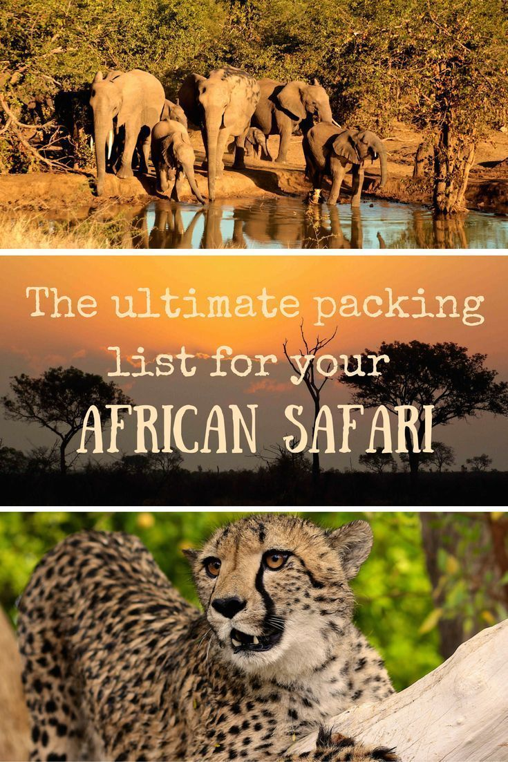 The ultimate African safari packing list #ultimatepackinglist Ultimate packing list for an African safari |packing list safari in africa | african safari packing list | packing list African safari #ultimatepackinglist The ultimate African safari packing list #ultimatepackinglist Ultimate packing list for an African safari |packing list safari in africa | african safari packing list | packing list African safari #ultimatepackinglist