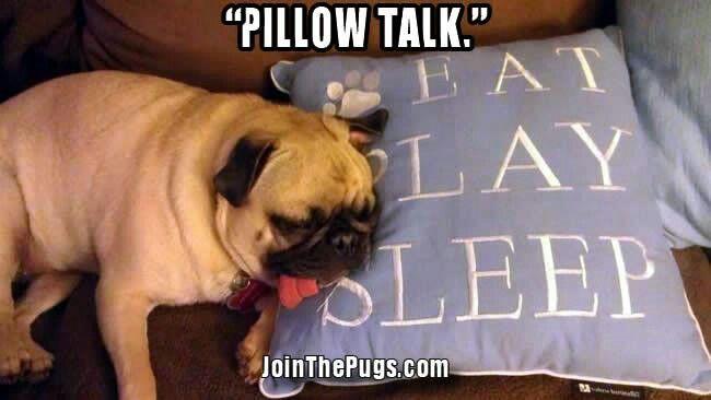 Oh yeah eat sleep play sleep