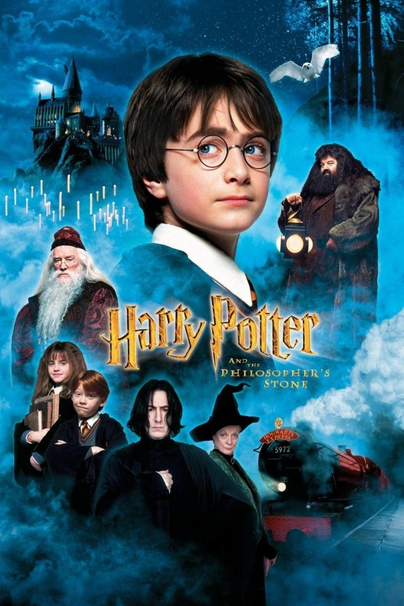 Harry Potter And The Sorcerer S Stone Harry Potter Movies Harry Potter Film Harry Potter