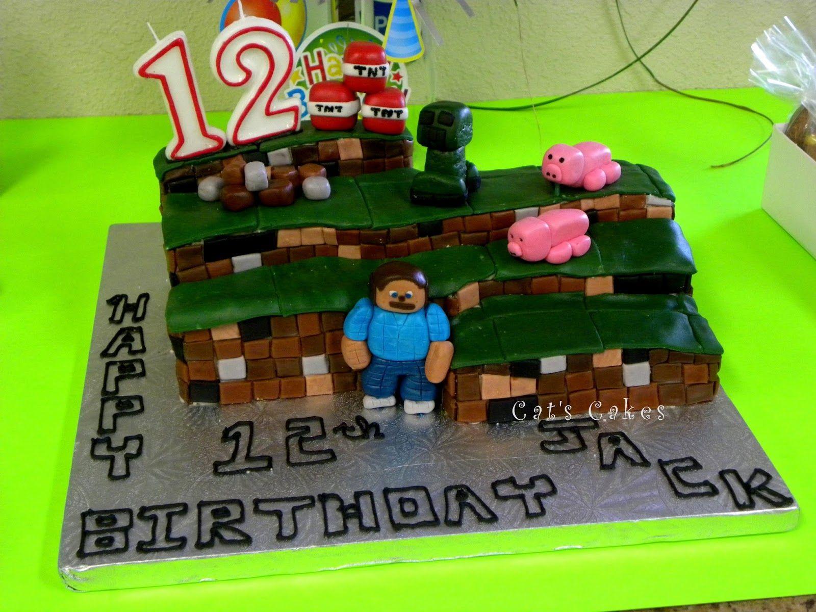 Anniversary cake cat cake minecraft birthday cake cake