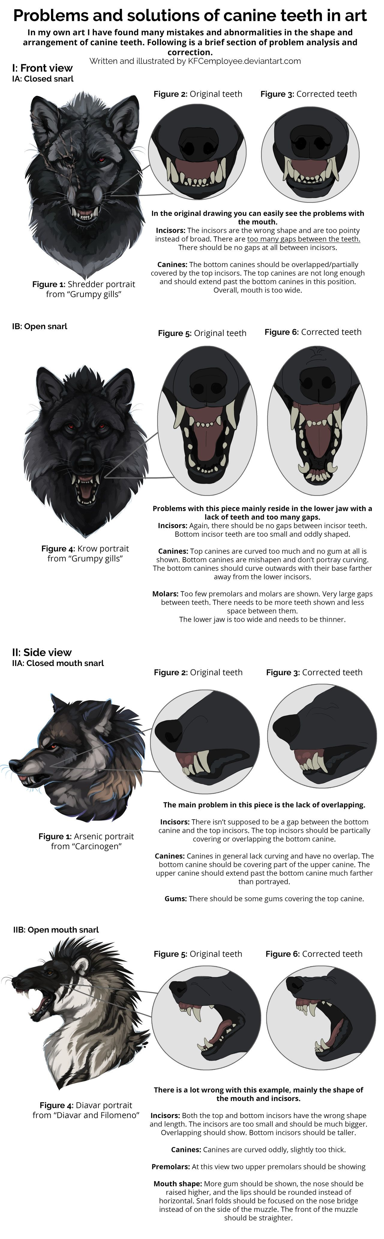 Fixing canine teeth and common anatomy errors by KFCemployee on ...