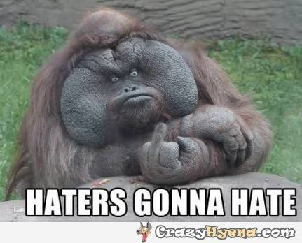 467f18b0602bfd430e2602a49a620fb8 funniest gorilla showing the finger and having epic face odds and