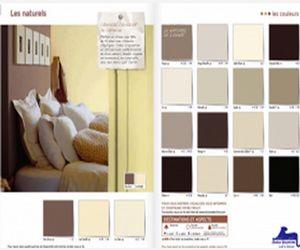 peinture 30 couleurs tendance pour repeindre la maison. Black Bedroom Furniture Sets. Home Design Ideas