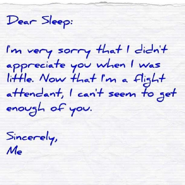 Dear Sleep  Flight Attendant Humor  Fa Lifestyle