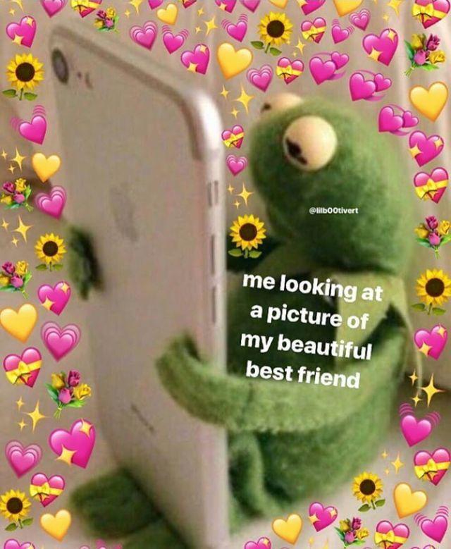 Amber Brooke Because Shes The Most Beautiful Girl In The World And She Deserves So Much More Than Memes De La Rana Plantillas Para Momos Plantillas Para Memes