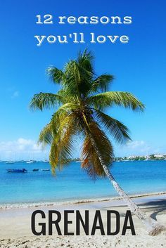 Dreamy white sand beaches, fresh authentic cuisine, affordable luxury, unspoiled beauty are just a few of the reasons you should visit Grenada now #Caribbean #Grenada #beach