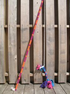 The Flirt Pole Dog Toy Or Life Changer Diy Dog Toys Diy Dog