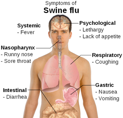 What are some signs and symptoms of the stomach flu?