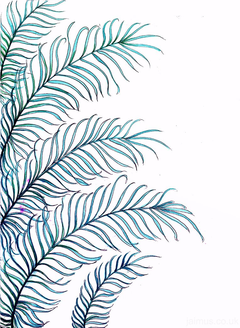 palm leaves tumblr  Google Search  video backgrounds  Trendy wallpaper, Plant leaves, Artwork