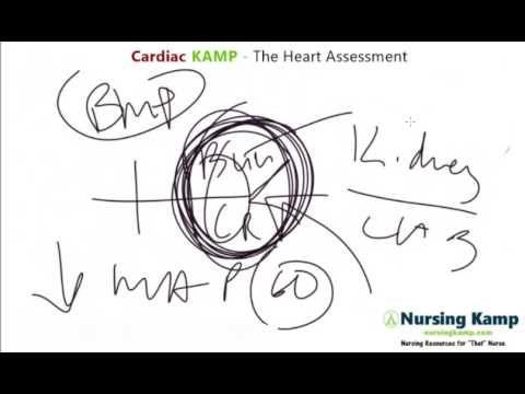 Nursing Kamp S Scribble Hemodynamic Map Mean Arterial Pressure Nursing K Mean Arterial Pressure Nclex Nurse