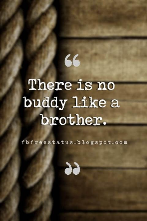 Quotes About Brothers Brother Quotes And Sibling Sayings Brother Quotes Brother Quotes Funny My Brother Quotes