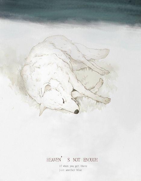 Photo of Day12: Wolf's Rain so beautiful and so sad